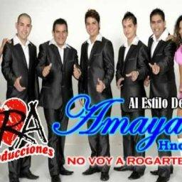 amaya-hermanos5.jpg